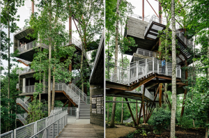 The Educational Interactive Sustainable Treehouse- Teaching Children-  Treehouse Holidays UK