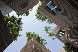 House of Tree's- Architecture- Award-winning