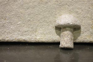 Mushroom based product creates building material stronger than concrete and more insulating capabilities than fibreglass.