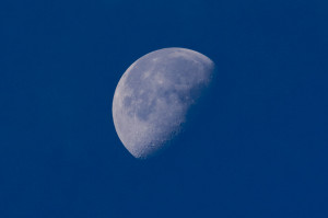 A clear image of a Blue Moon in the sky near Quality Unearthed's Devon Glamping accommodation.