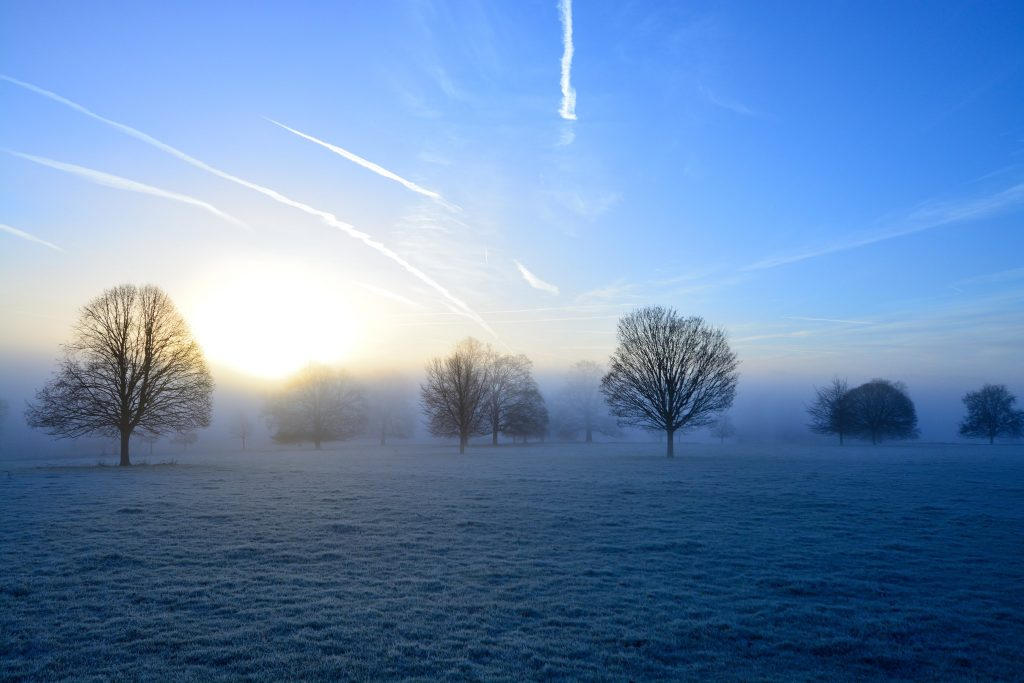 A frosty misty dawn in the Cotswold hills, Cotswolds AONB, United Kingdom